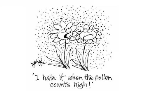 Science-allergy-summer-pollen-high_pollen_count-flower-rje0346_low