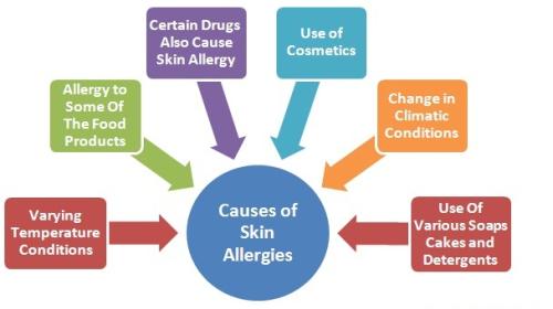 Causes of Skin Allergies