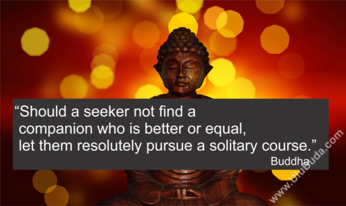 Buddha-Should-a-seeker-not-find-a-companion-who-is-better-or-equal,-let-them-resolutely-pursue-a-solitary-course