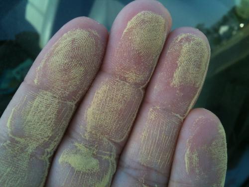 Avoid-pollen